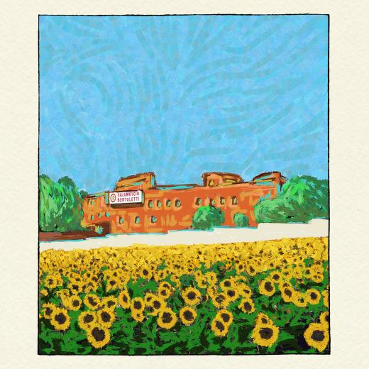 Sunflower field with building