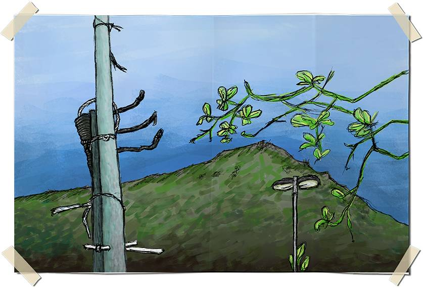 Digitally colored graphite drawing - Hill and poles in Leme - Rio de Janeiro, Brazil