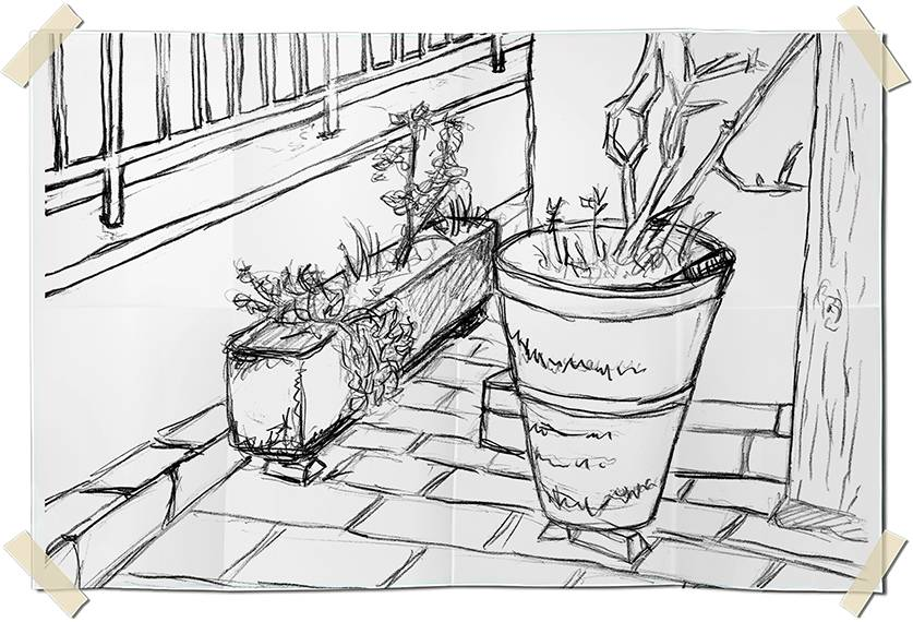 Graphite drawing - pots and dried flowers