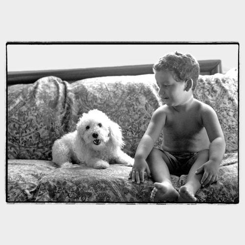 Little white dog with young kid on a sofa